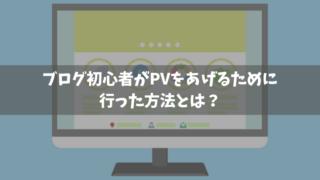 ブログ初心者PV